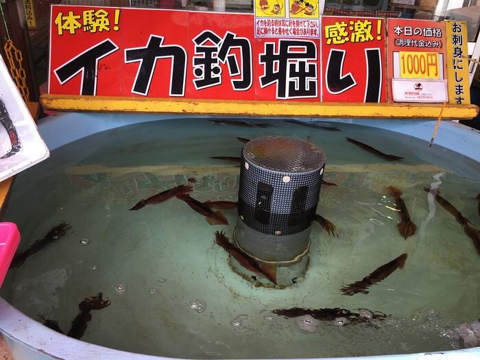 函館朝市イカ釣りの穴場スポット